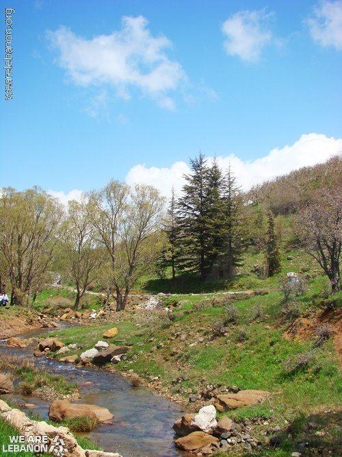 The Beauty Of Lebanons Nature جمال الطبيعة في لبنان Photo By Jocelyne Tawk Nature Photos Country Roads Bible Land