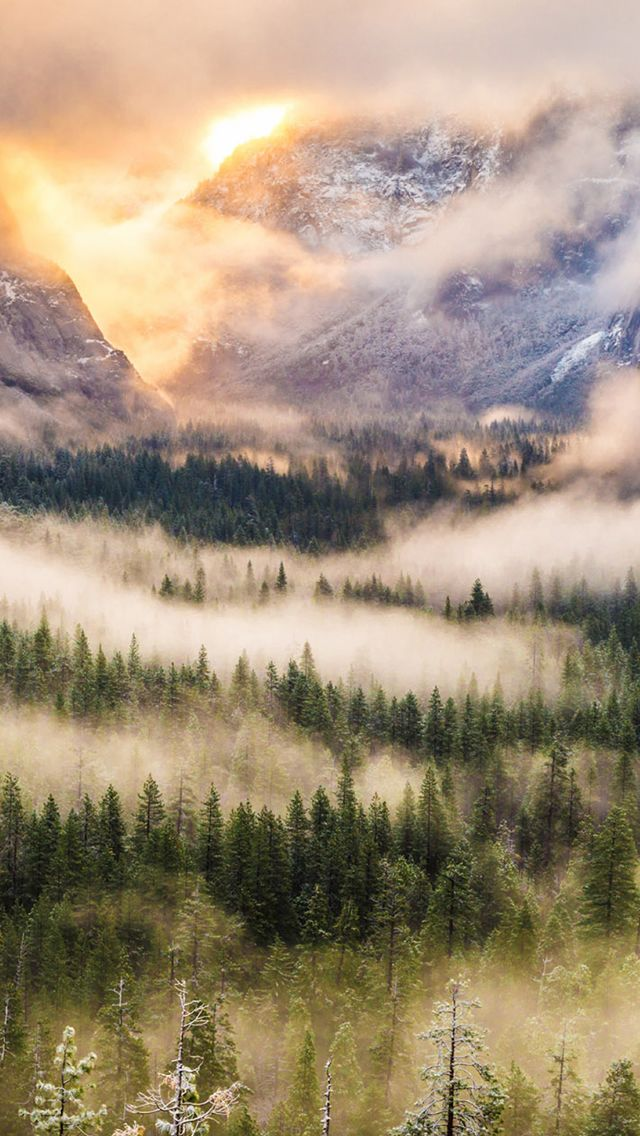 Nature Foggy Forest Mountains Landscape #Phone #5s