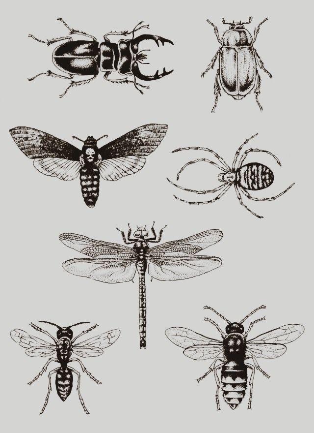 Tattoos おしゃれまとめの人気アイデア Pinterest Daisuke Kishima タトゥー 水彩 スケッチ