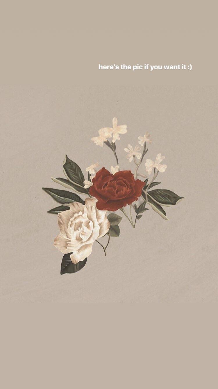 Pin von Fabiënne auf Shawn Mendes | Pinterest | Rahmen und Hintergründe