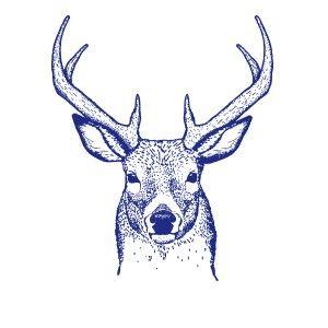 Cerf des bois gifts elk tattoo custom tattoo et deer drawing - Comment dessiner un cerf ...