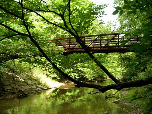 Aman Park; Grand Rapids, MI -- a variety of trails to hike