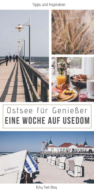 Bereit für eine InselSafari auf Usedom? in 2019 Usedom
