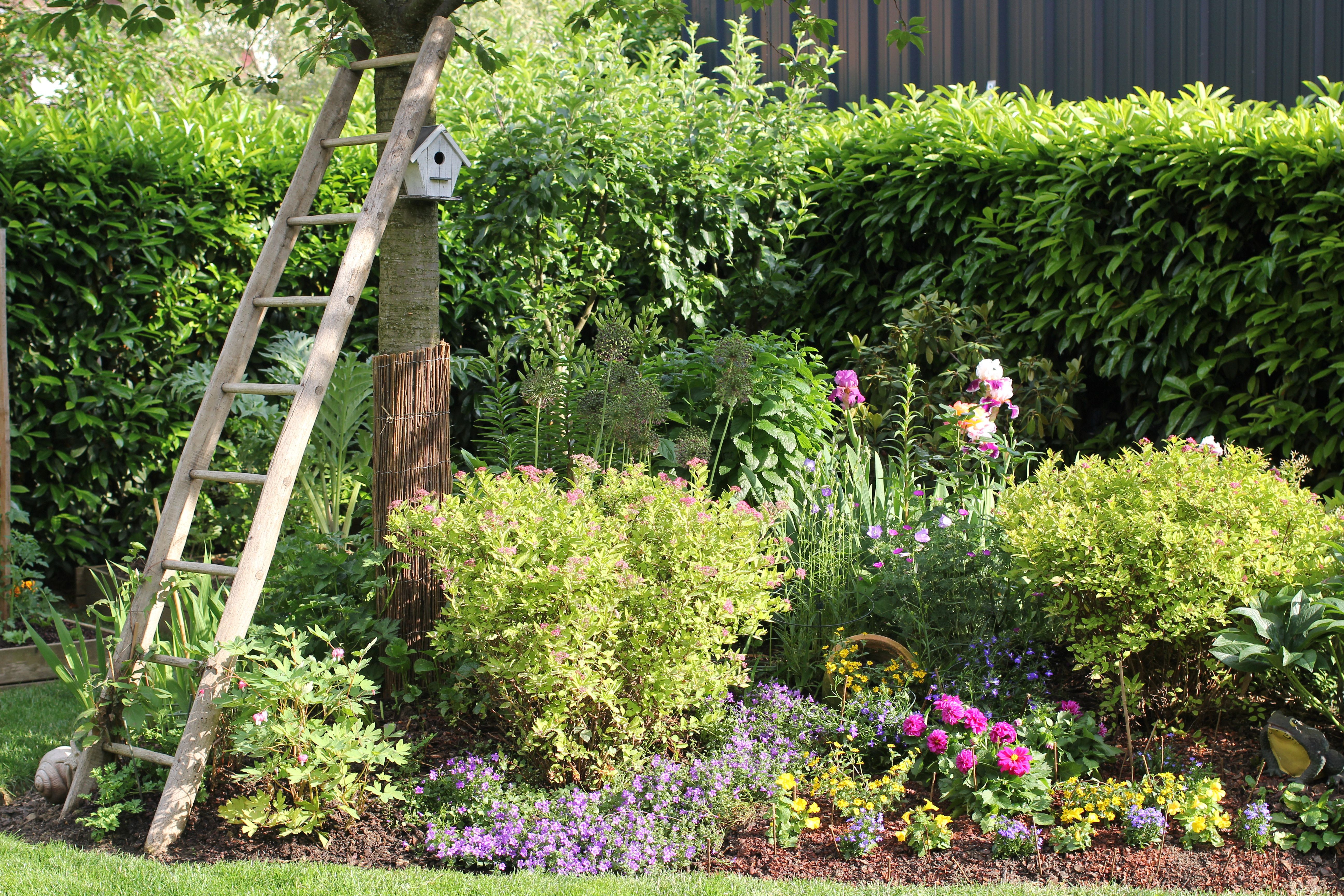 Idee Pour Refaire Son Jardin Idees Jardin Jardins Avant