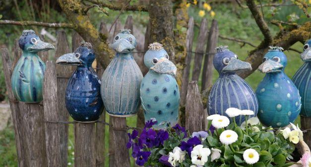 Vögel Aus Garten Verschwunden