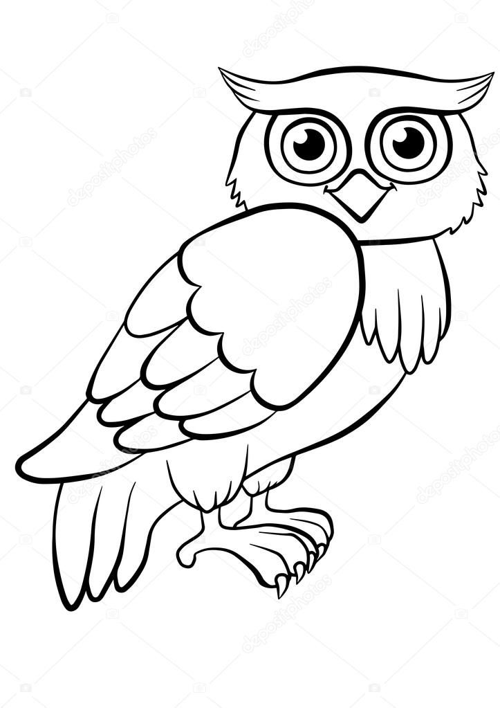 Gufo Per Mosaico Owl Coloring Pages Owls Drawing Coloring Pictures