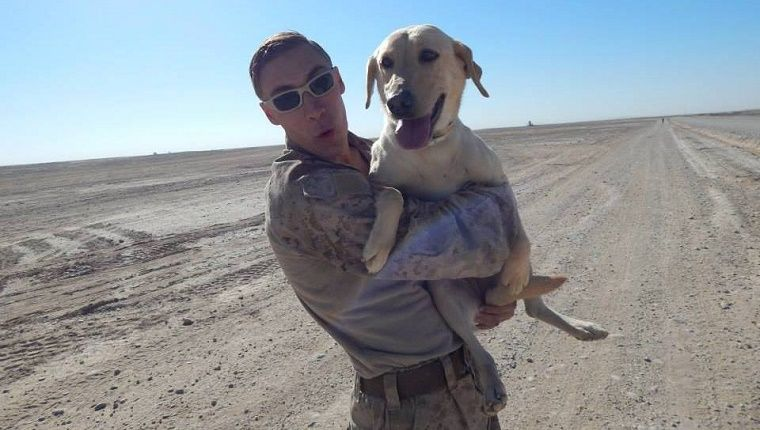 Afghanistan Veteran Reunited With Bomb Sniffing Dog Partner In The