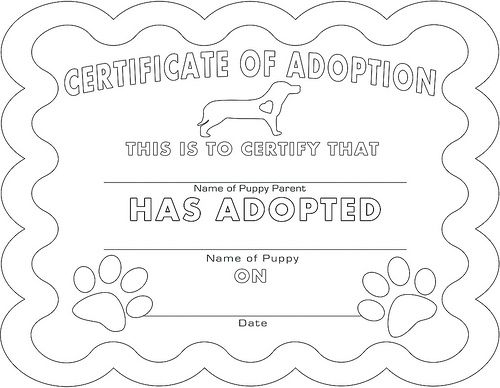 Adoption certificate coloring page birthday party pinterest adoption certificate coloring page yadclub Images
