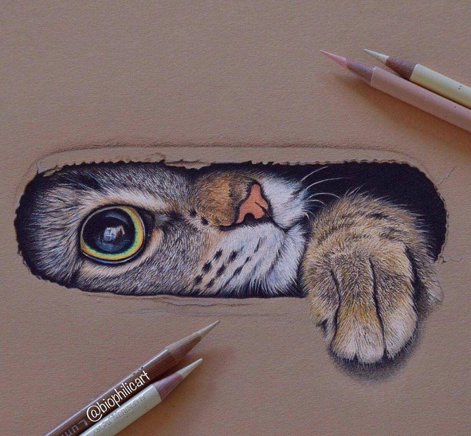Pin de Jennifer Paulette en Drawing | Pinterest | Dibujo, Dibujos ...