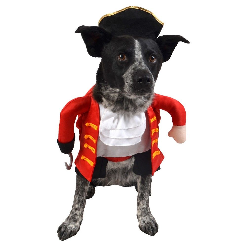 Halloween Pirate Frontal Dog Full Body Costume Large Hyde