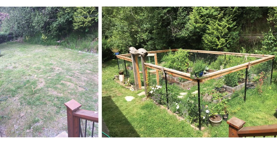 Before and after gardening garden diy home flowers