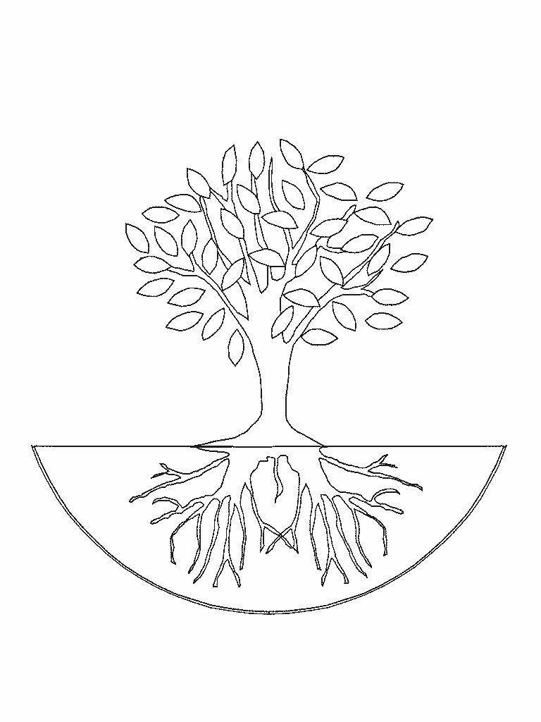 Tree Jpg 768 1024 Tree Coloring Page Coloring Pages Color
