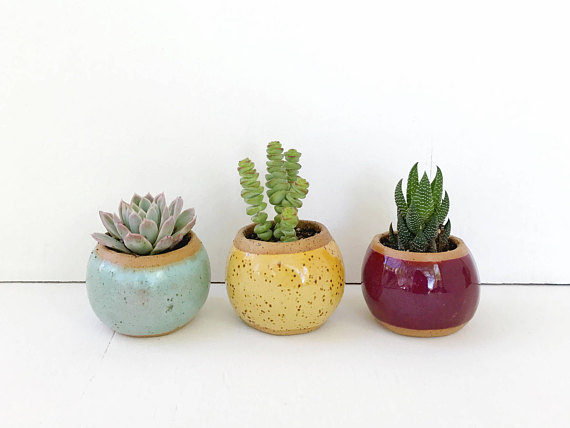 Small Yellow Pot For Succulents Cactus Or Air Plants Yellow Ceramic Planter The Knoll Planter Ceramic Succulent Planter Clay Plant Pots Ceramic Succulent