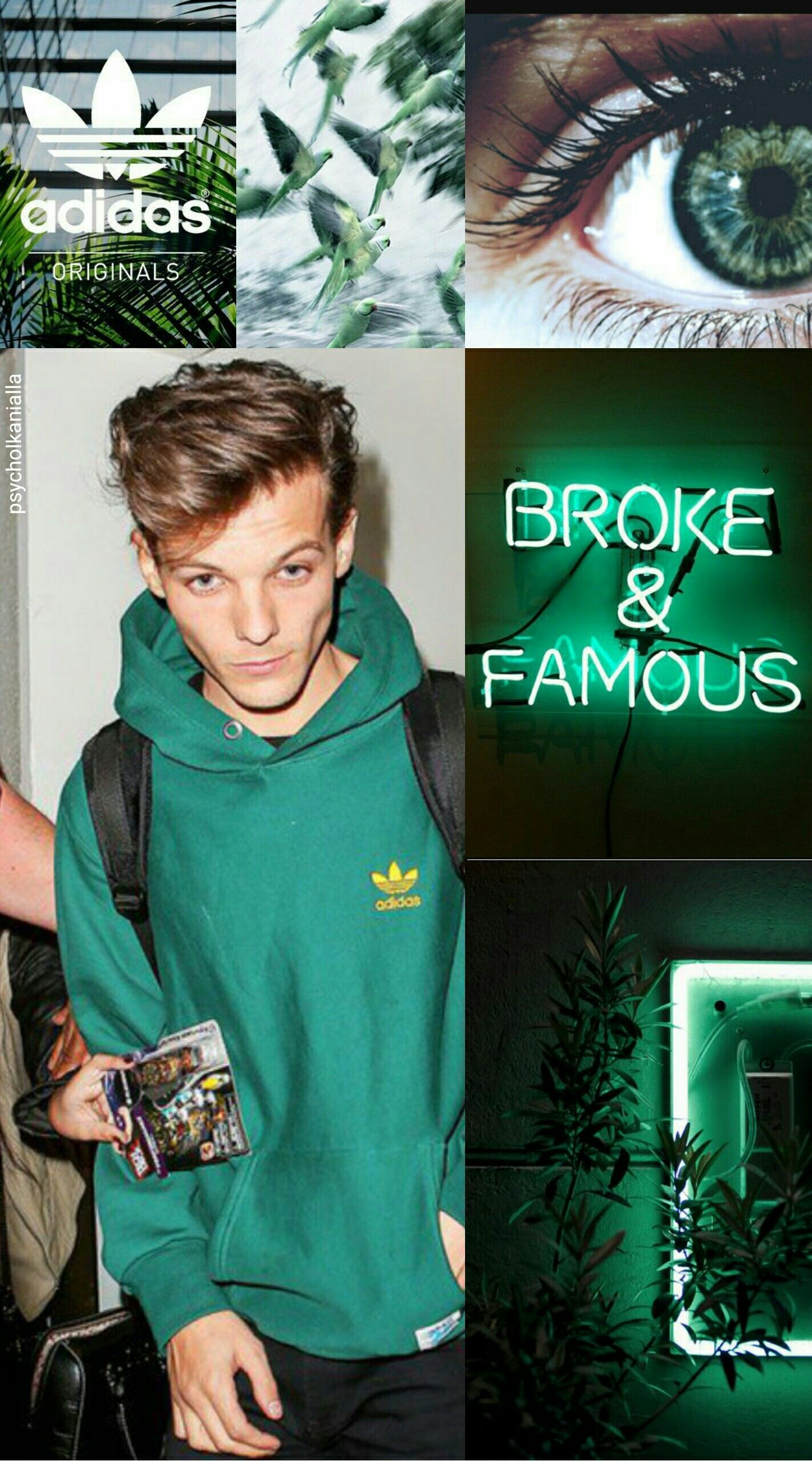 sweater, green, adidas, hoodie, louis tomlinson Wheretoget