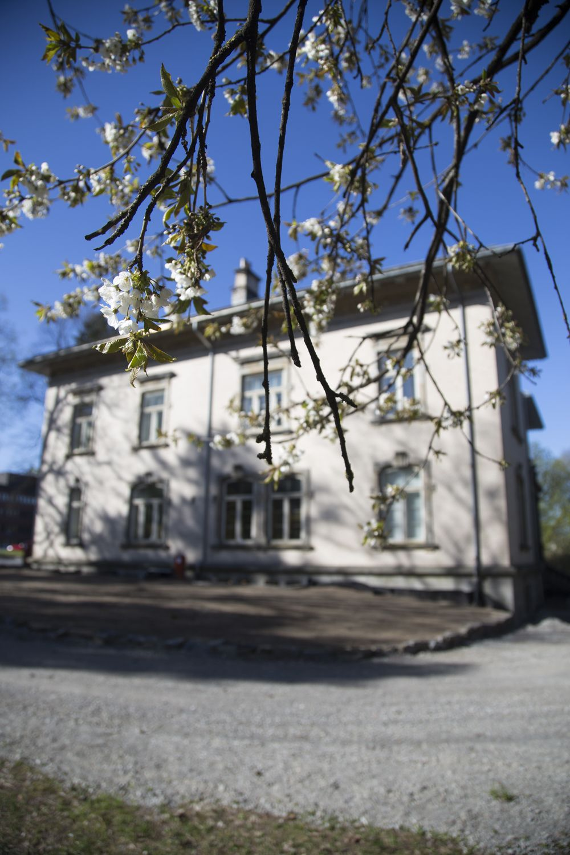 Villa Frednes (Landmark in Porsgrunn, Norway)  Historical residence from 1905. Renaissance building, 1400 square meters. Built by Jørgen C. Knudsen (Architect Halldor Larsen Børve)    Follow on Instagram: @villafrednes