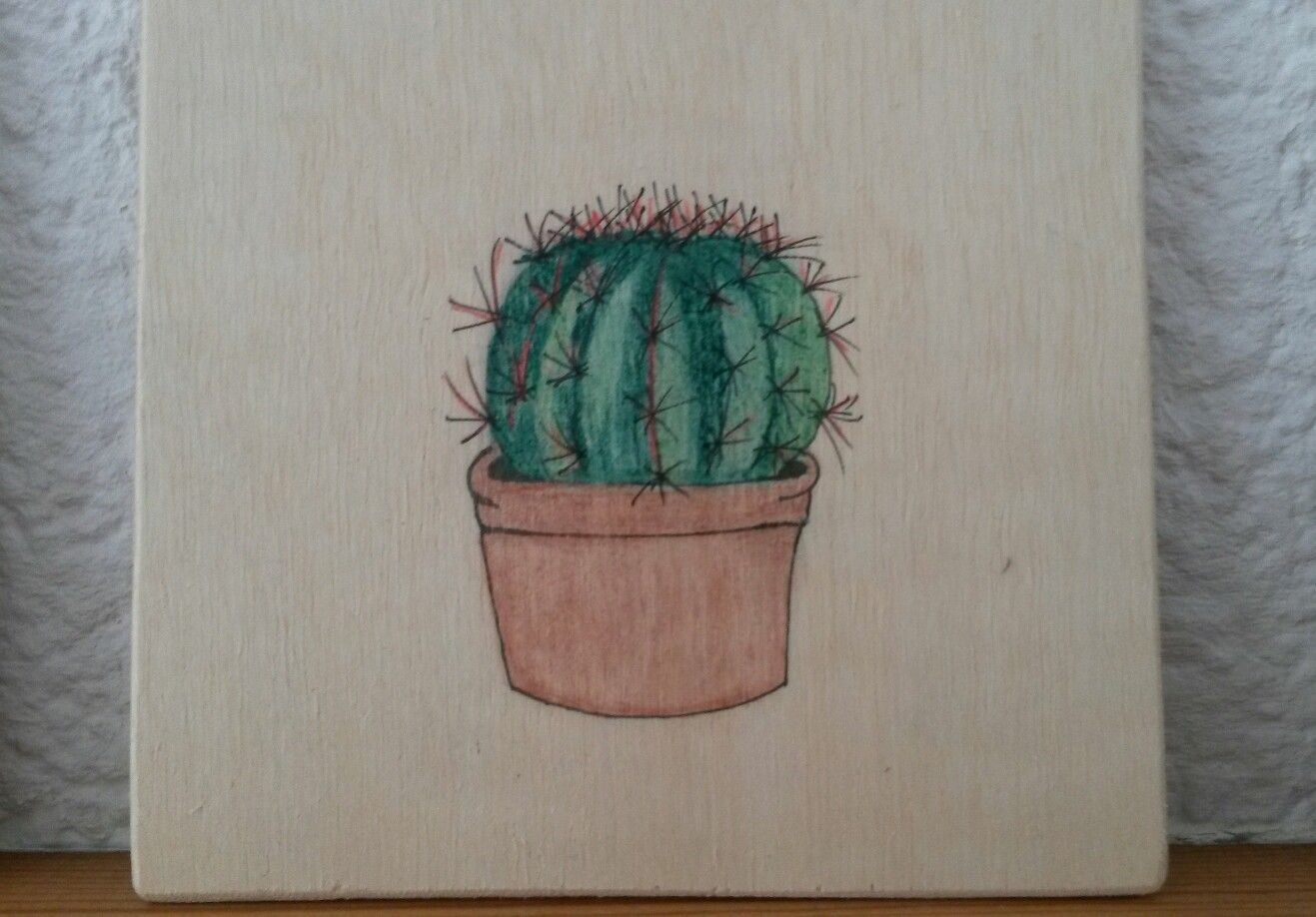 Cactus on wood