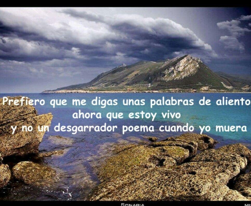 Hoy y Ahora   Spanish quotes, Spanish, Outdoor