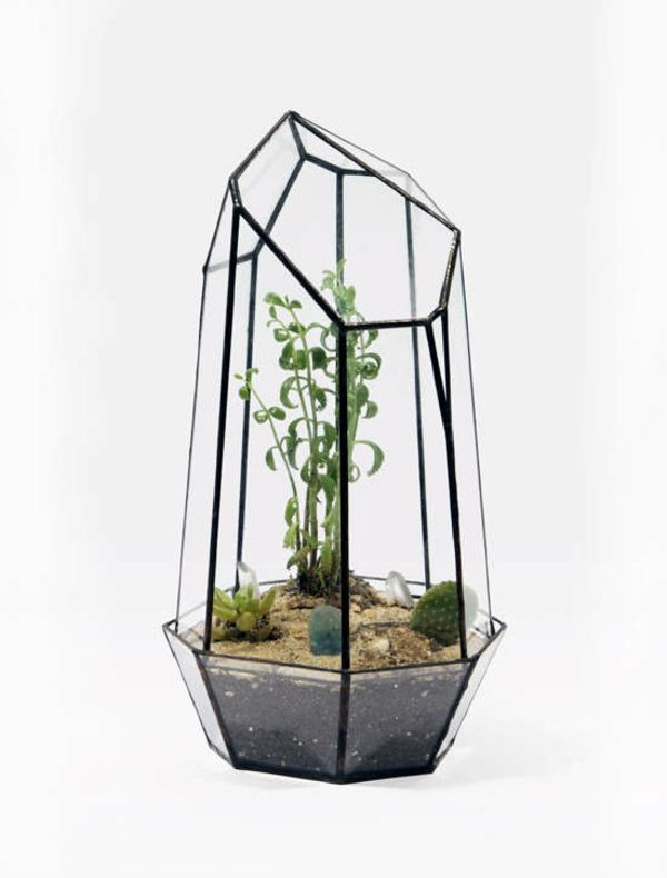 wie baue ich ein terrarium pflanzen und passende glasgef e basteln terrarium terrarium. Black Bedroom Furniture Sets. Home Design Ideas
