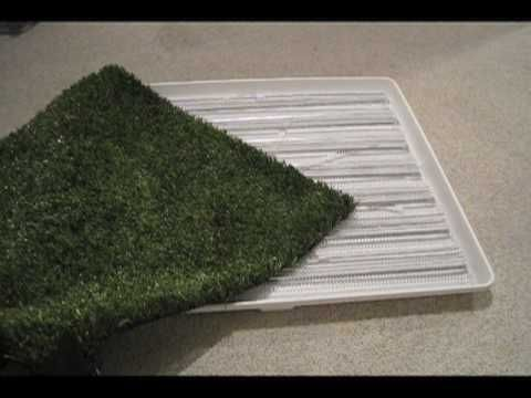 Make Your Own Pet Potty For In The House Or Outside For About 40 Easily Rinse The Artificial