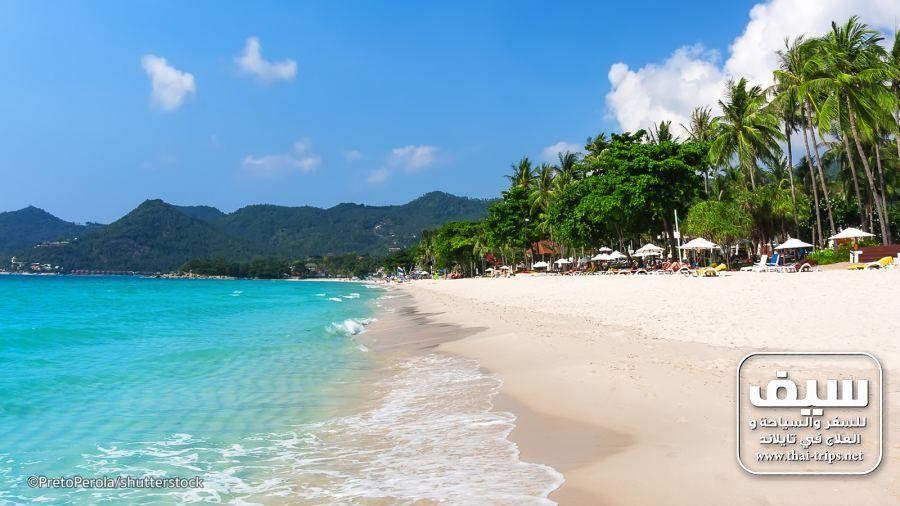 السياحة في كوه ساموي أهم 9 جولات و أنشطة سياحية يومية فى كو ساموي رحلات تايلاند ชายหาด สถานท ท องเท ยว โทรศ พท