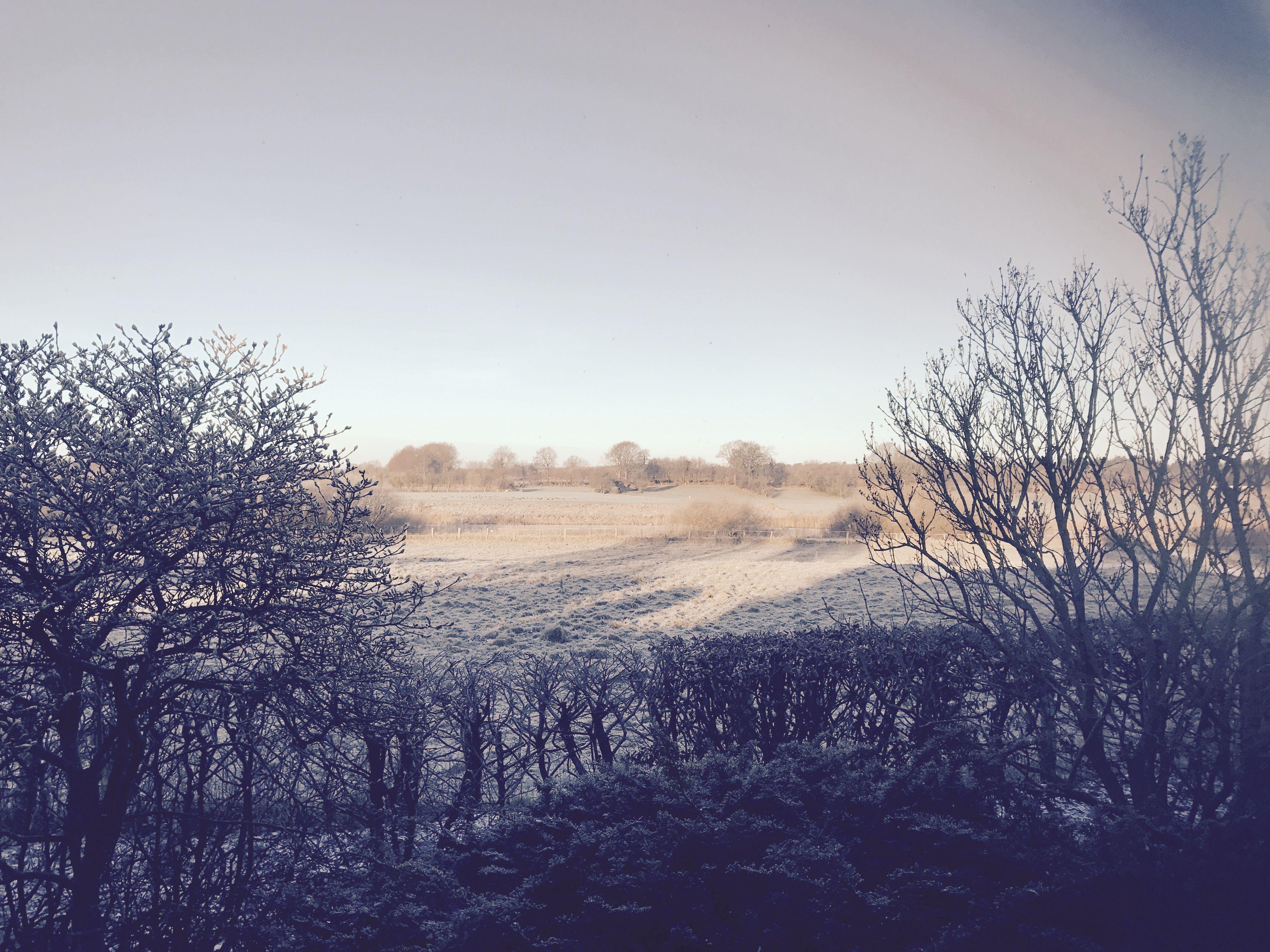 Endlich Winter ❄️
