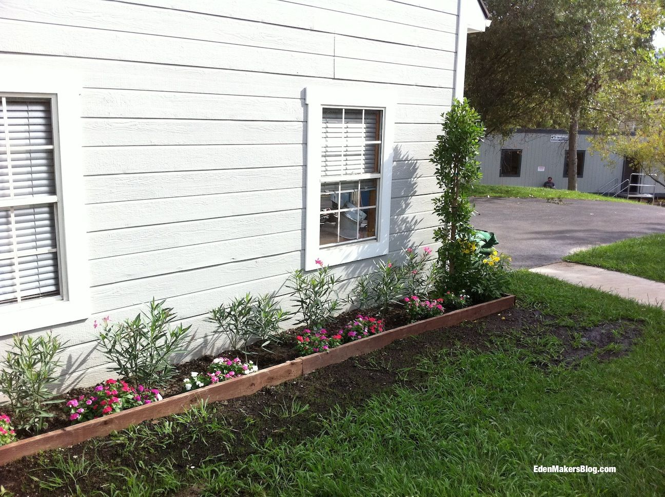 Home-and-Family-Show-Front Yard-Makeover-Before-Shirley-Bovshow ...