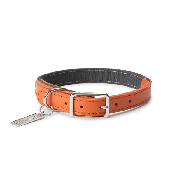 Dog Collars And Leashes Leather