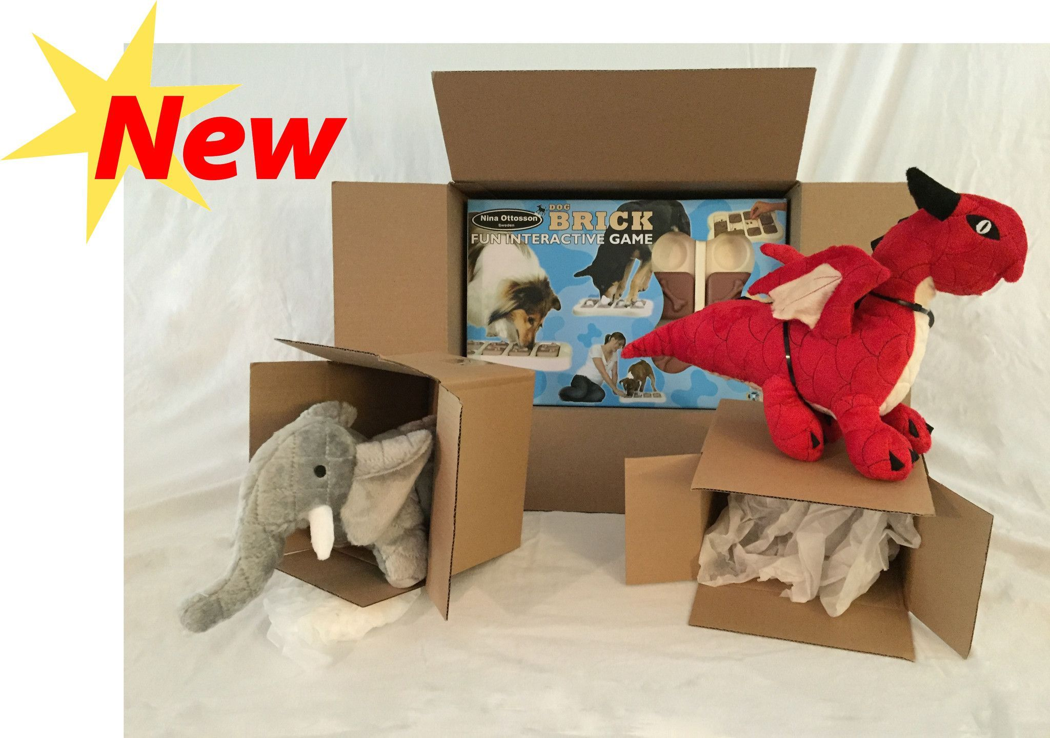 Capri's Toy Delivery
