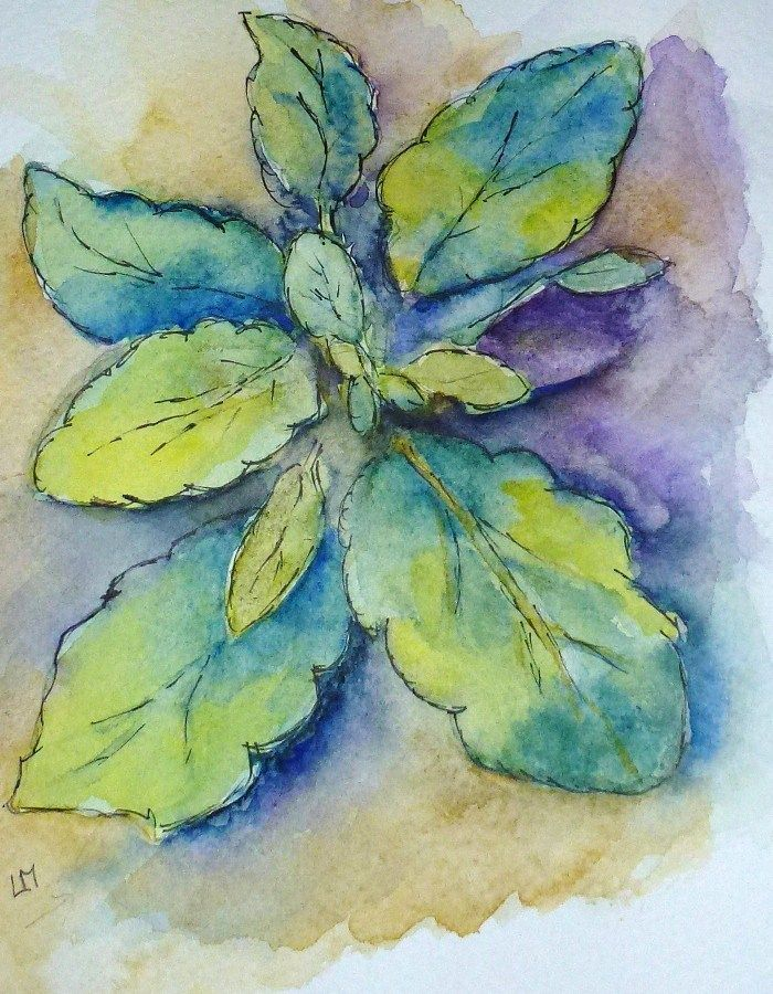 Pen, Ink and Watercolour Tips and Links by Laura Moore