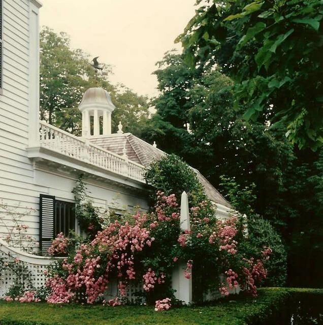 Beautiful-Gardens-in-the-Hamptons-landscape-design-lush-gardens-terraces (1)