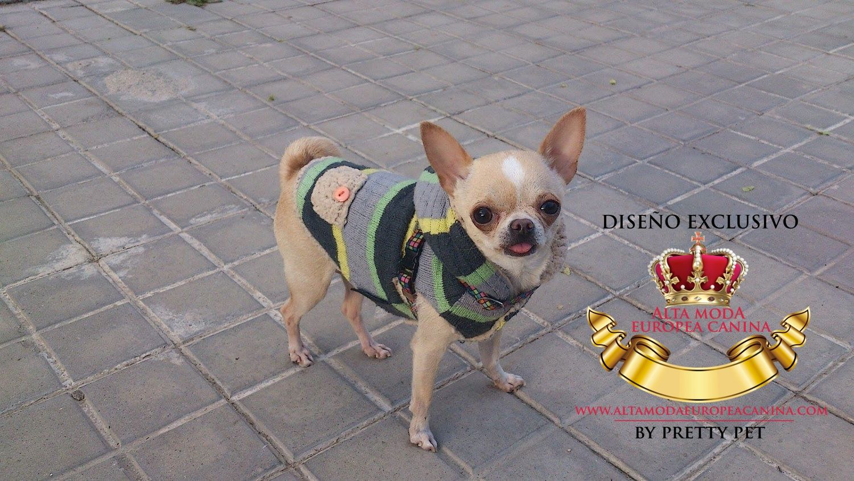 Jerseys para Chihuahuas, miralos aquí http