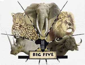 The phrase Big Five game was coined by big-game hunters ...