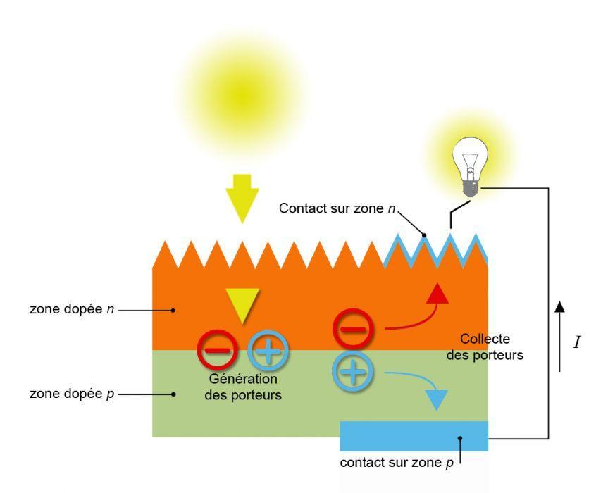 Constitution d 39 une cellule photovolta que d 39 apr s source for Fonctionnement des panneaux photovoltaiques