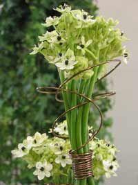 Composition florale  Comment faire un arrangement floral