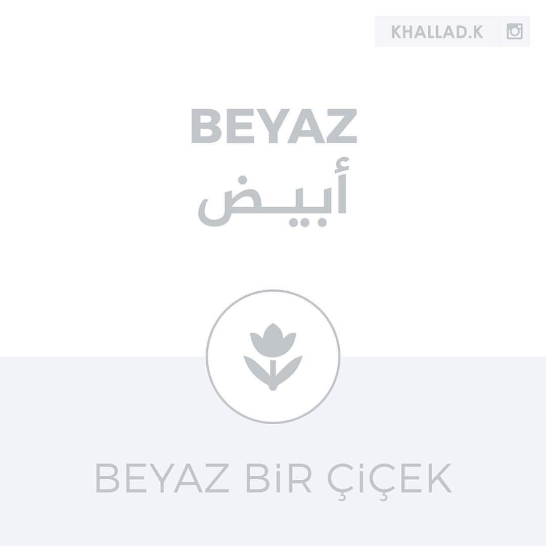 تعليم اللغة التركية On Instagram الأبيض بياز Beyaz مثال لاستخدام الكلمة زهرة بيضاء Beyaz Bir Cicek بياز بير شيشيك Cicek زهرة شيشيك تعليم Cicek