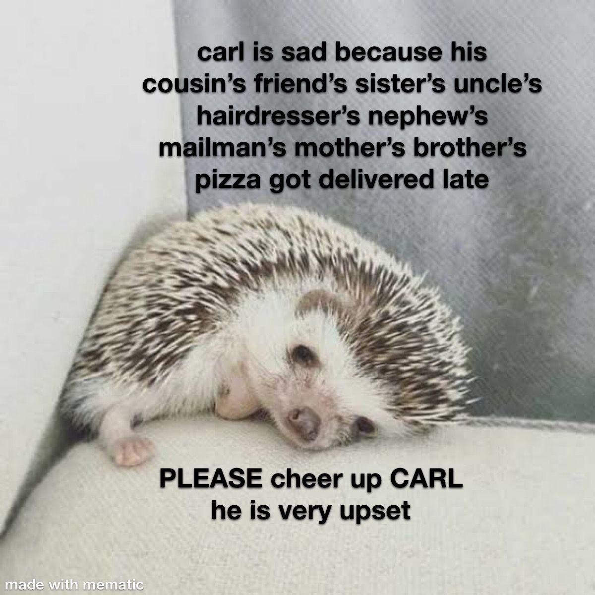 Pin By Katie Duwall On Carl The Hedgehog Funny Memes Images Happy Memes Funny Internet Memes