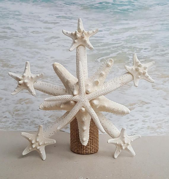 Beach Christmas Tree Topper: Deluxe Starfish Tree Topper- Natural, Gold Or Silver