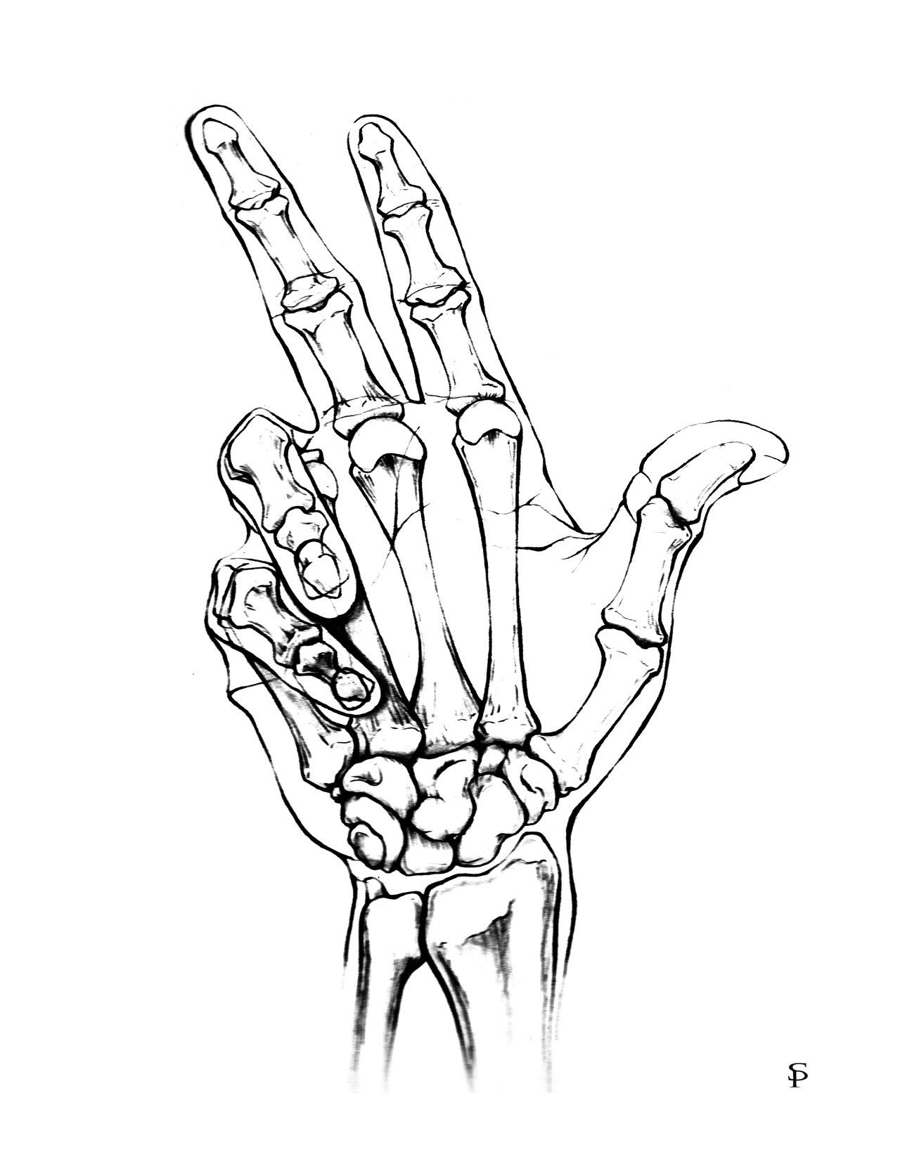 Hand Drawing X Ray Easy Hand Drawings How To Draw Hands Cool Drawings