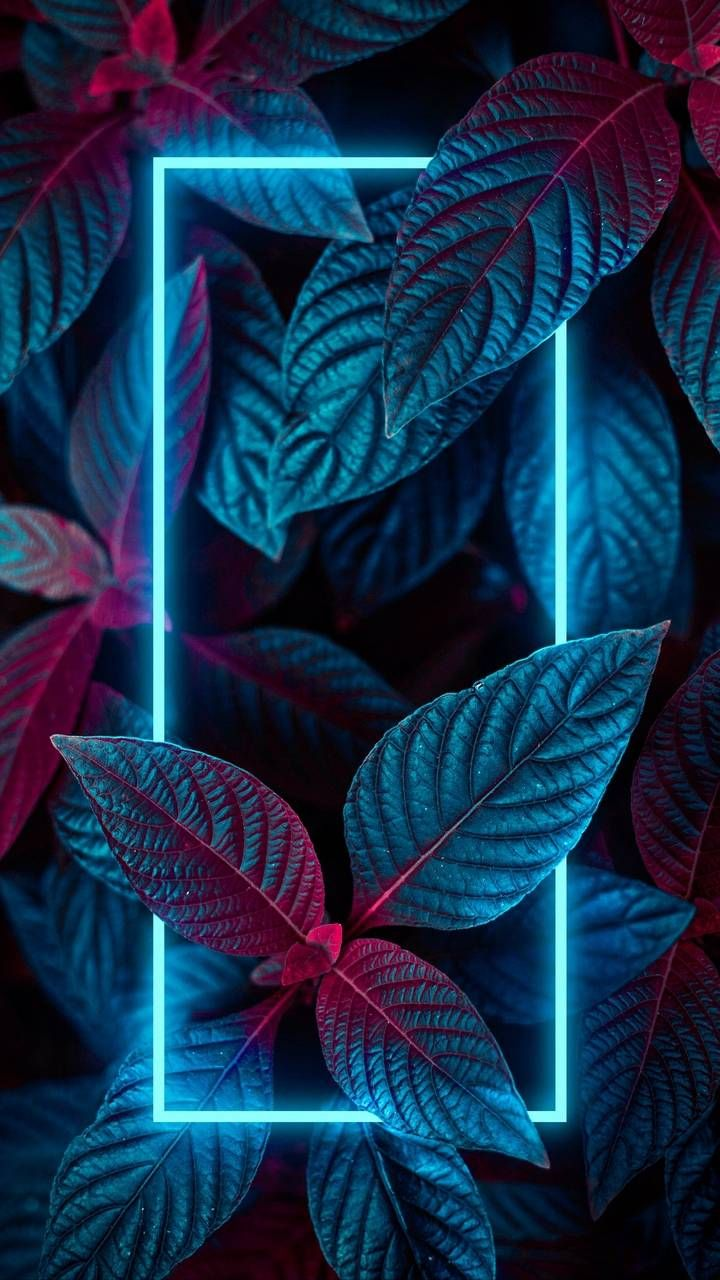 Neon Nature Foliage Wallpaper - iPhone Wallpapers