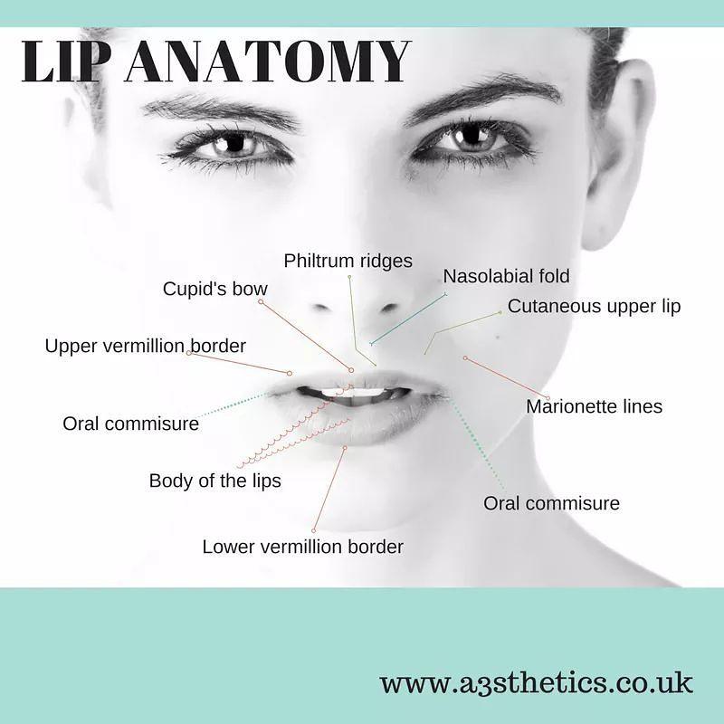 WHAT IS a LIP ENHANCEMENT | Lips and Cosmetic procedures