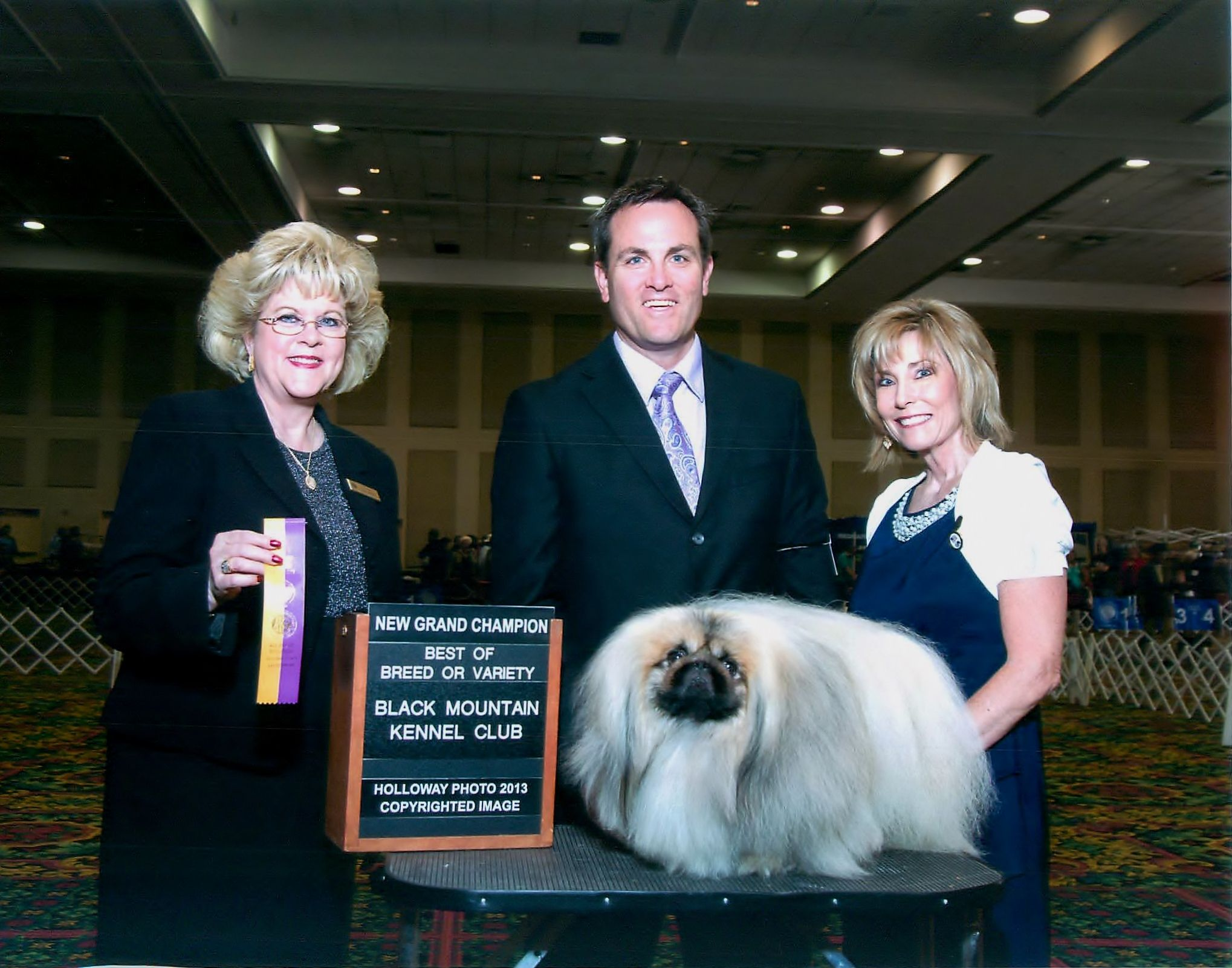 Gch rollabouts dust buster akc dog breeds pekingese
