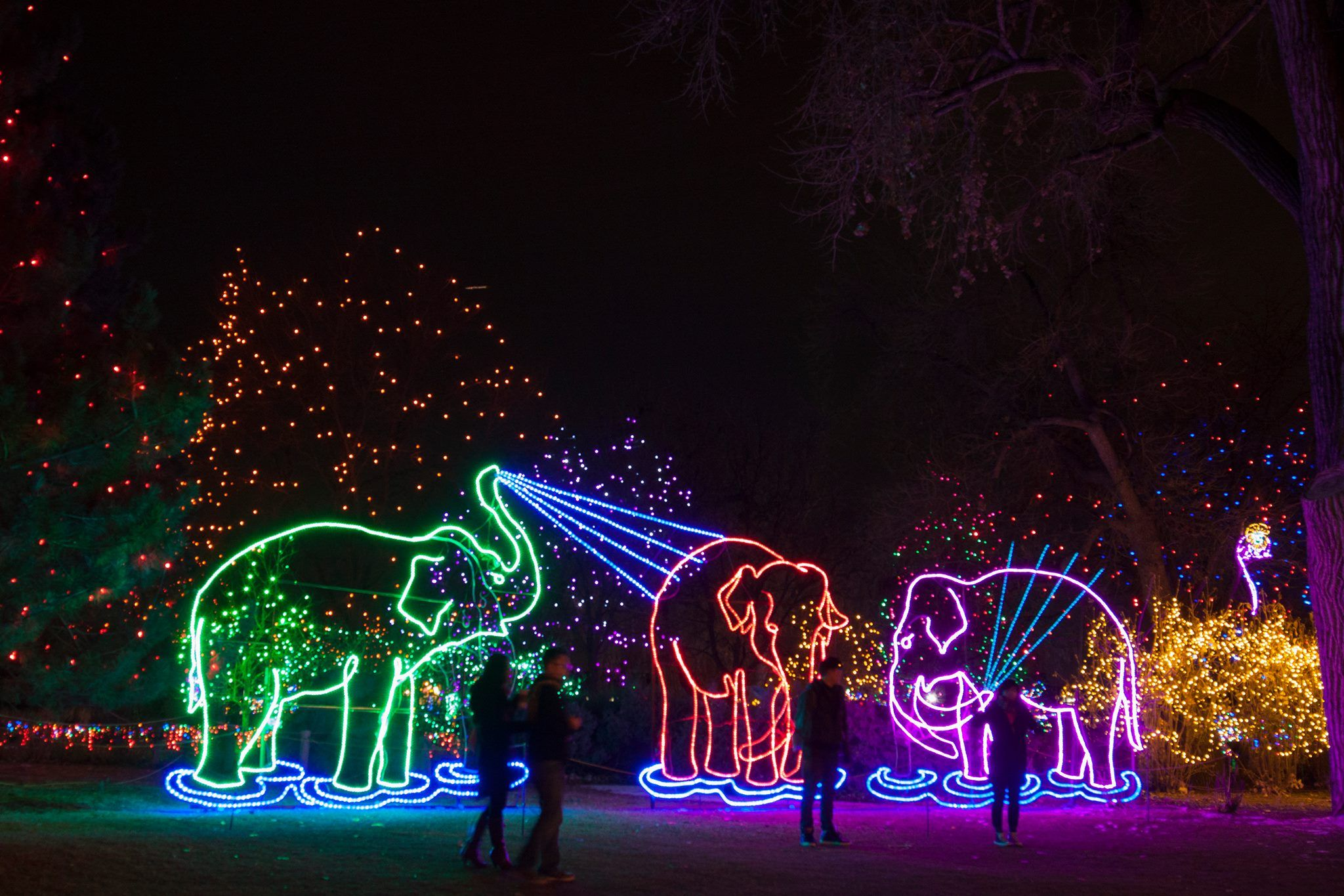 If You Re In The Denver Area Be Sure To Check Out The Denver Zoo Lights Event This Holiday Season Plus Use Abenity To Zoo Lights Denver Zoo Christmas Lights