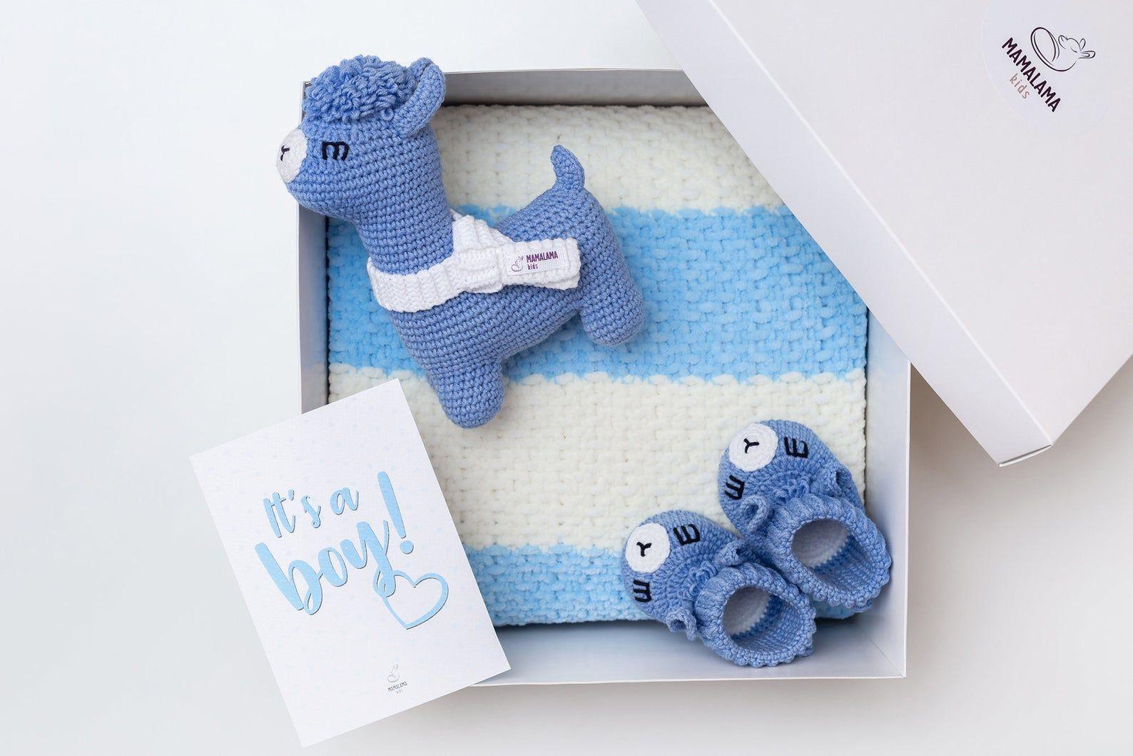 Baby boy blanket gift basket new mom baby boy reveal