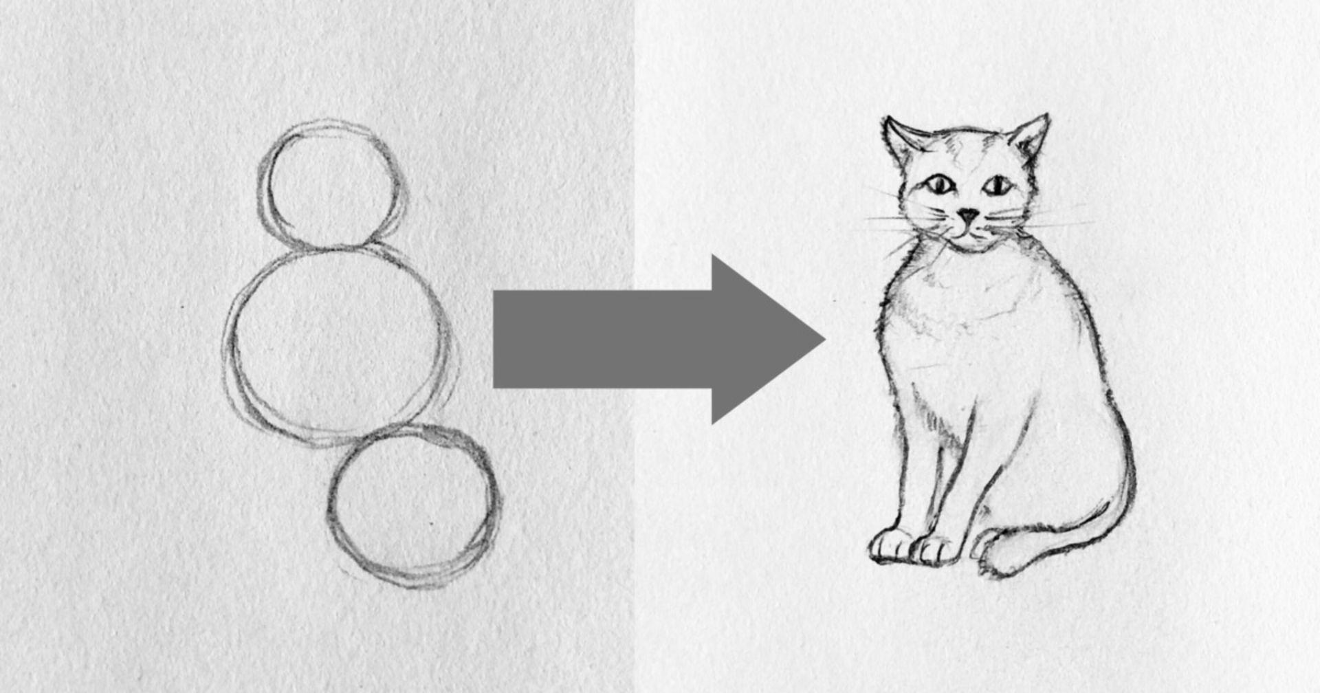In Funf Einfachen Schritten Eine Katze Zeichnen Katze Zeichnen Katzen Zeichnen