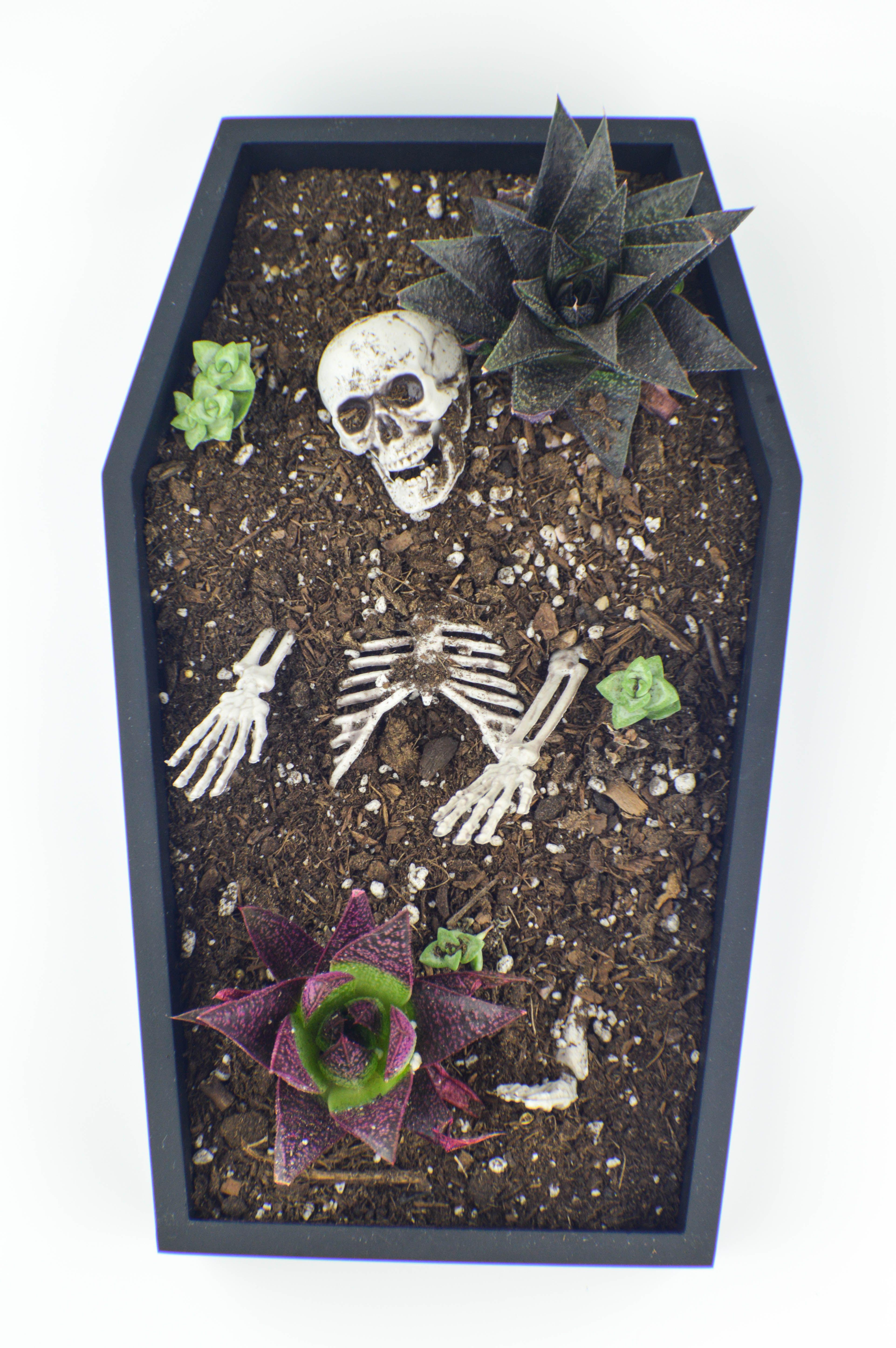 halloween diy coffin table planter