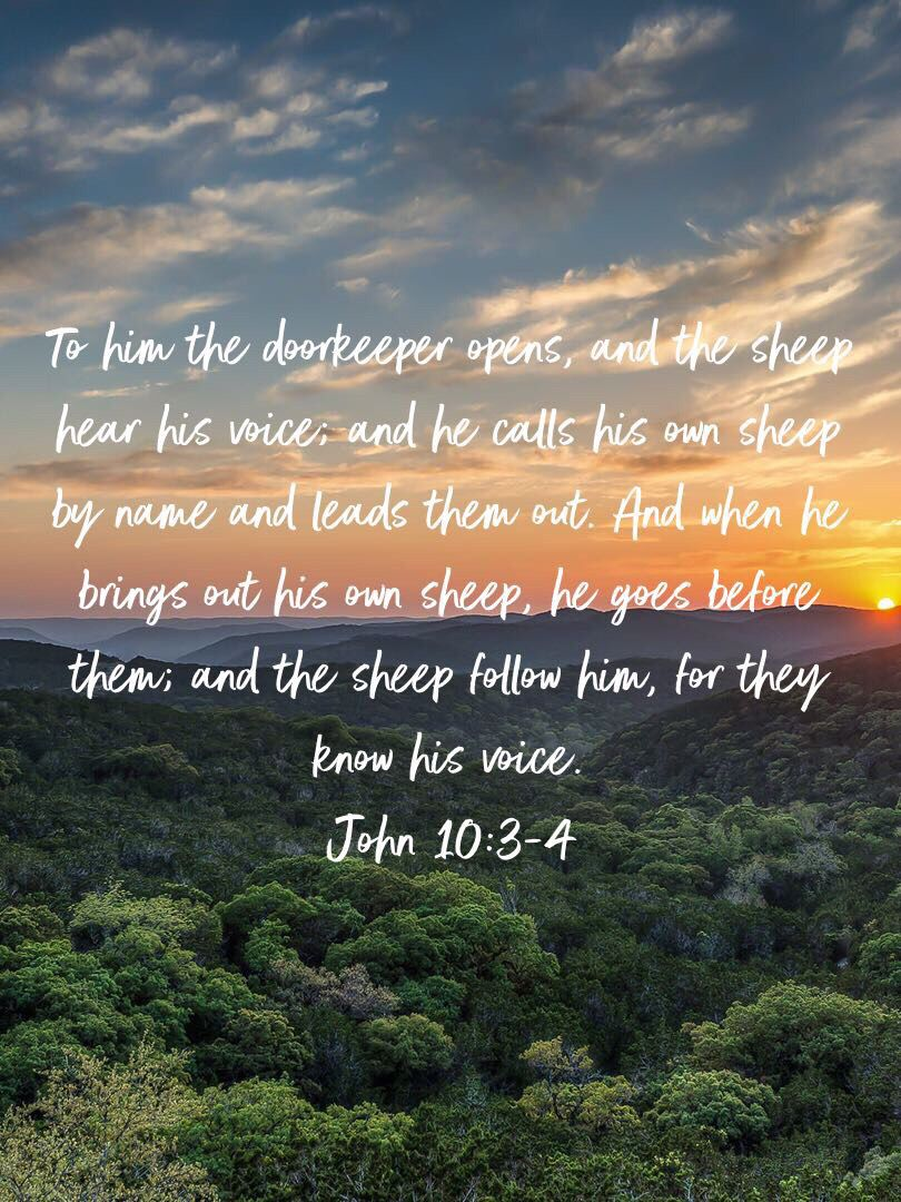 John 10:3-4 | Trust god, Faith, Bring it on