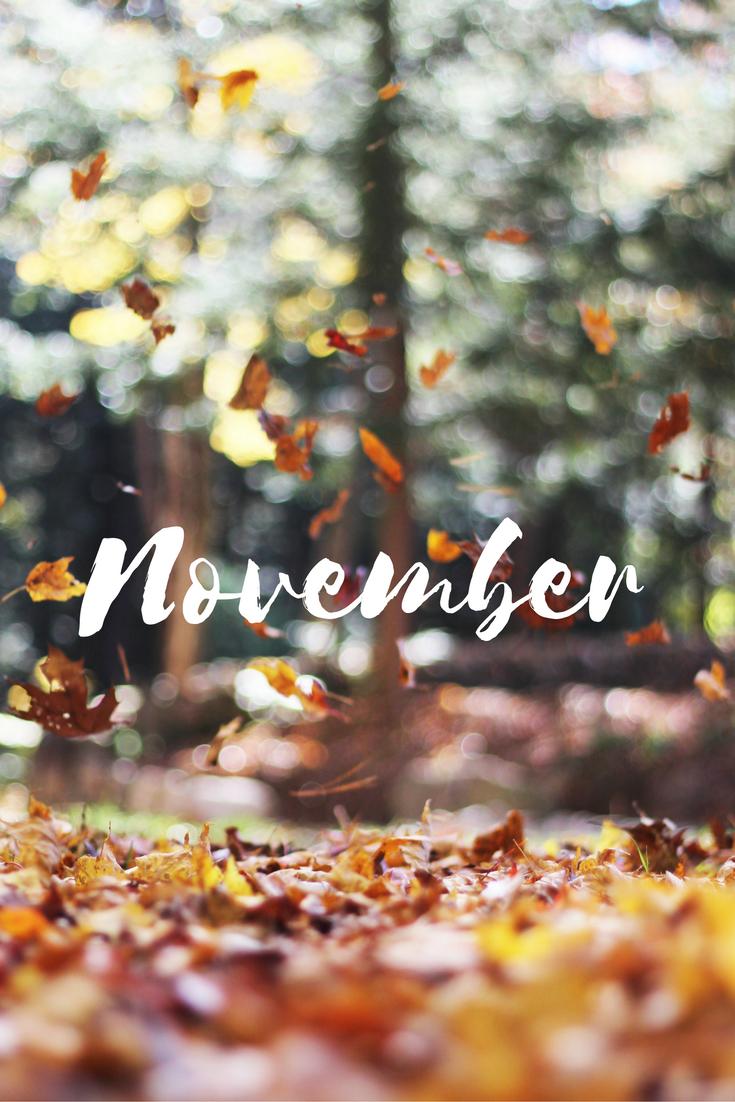 Hello, November/Leaves Falling....