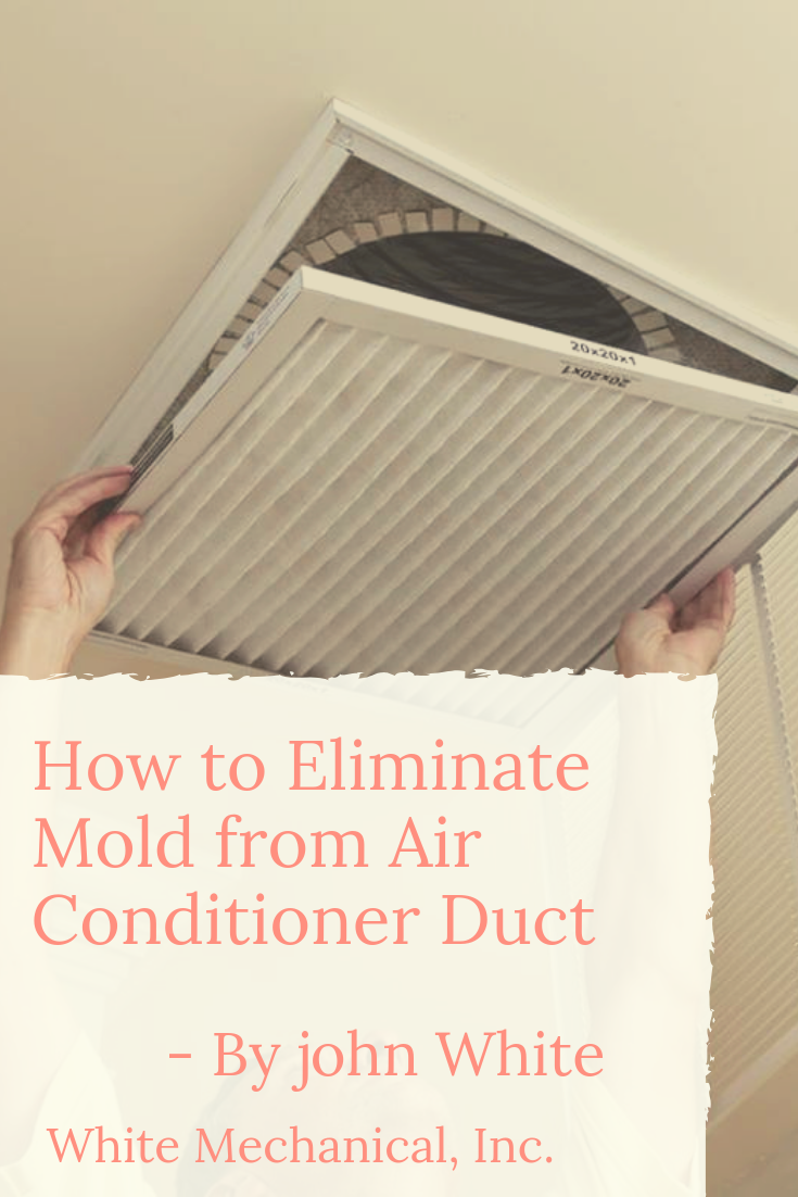 How to Eliminate Mold from Air Conditioner Duct (With
