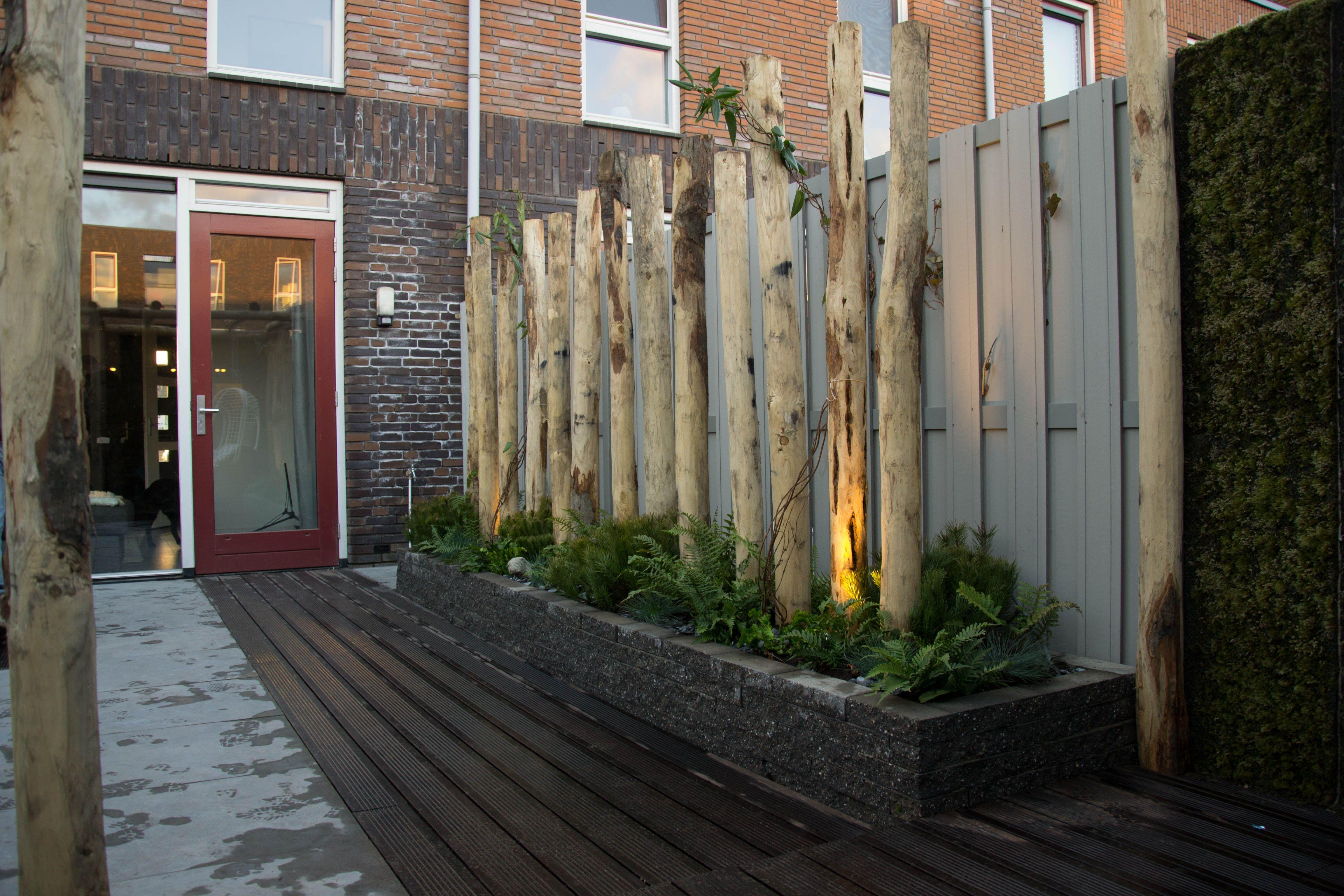 Eigen huis en tuin praxis maak je tuin uniek met takken for Tuin praxis