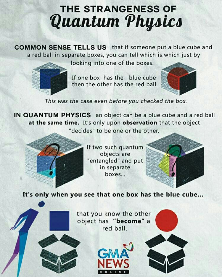 Schrodinger S Cat Stephen Hawking Once Said To Paraphrase I Thought Had A Good Understanding Physic And Mathematic Physical Science Quantum Physics Spin Box